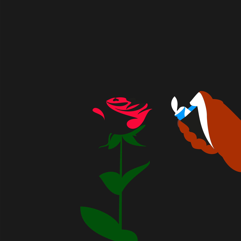 la-rose-raphael-grossot